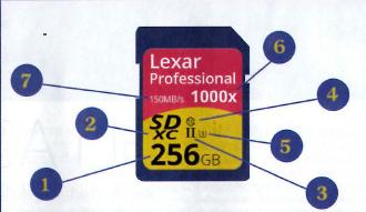 SD CARD: Come Sceglierle